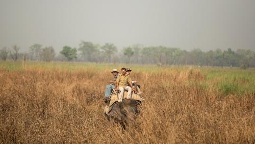 Dudhwa-elephant-ride